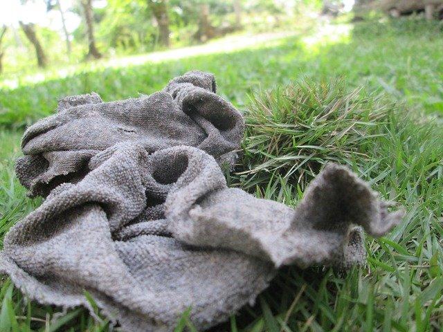 hadr na trávníku