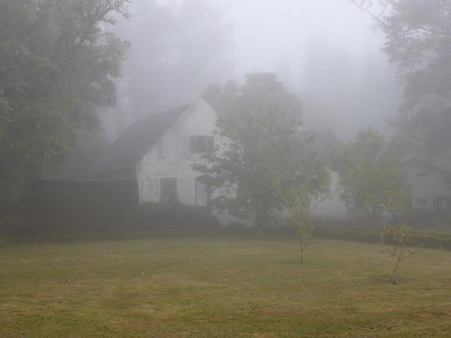 mlha u domu